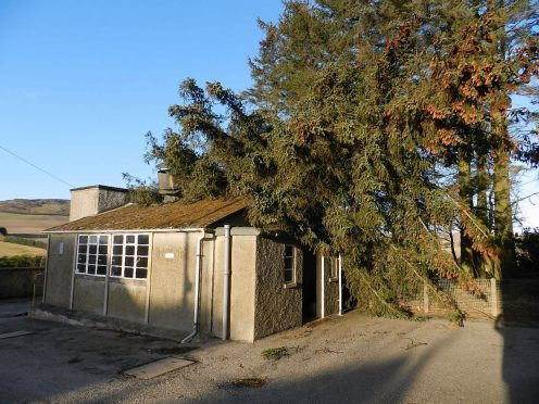Fisherford School was damaged last year when a tree fell on top of its dining hall.