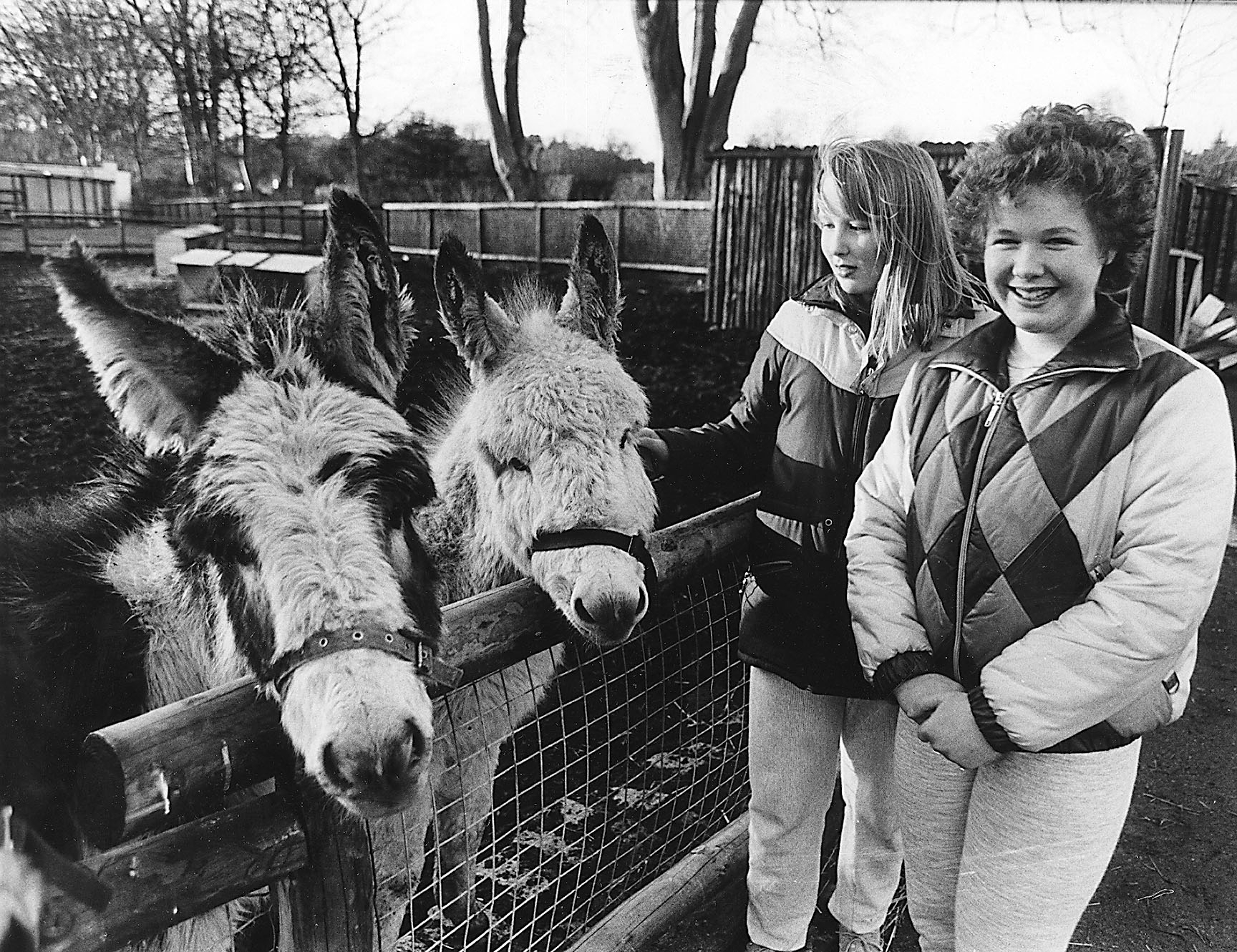 Stephanie Chesney and Nicola Connon with donkeys at the petting zoo.