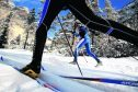 It may not look as thrilling as whizzing downhill, but cross-country ski-ing is growing in popularity