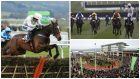 Our top tips on day four at Cheltenham