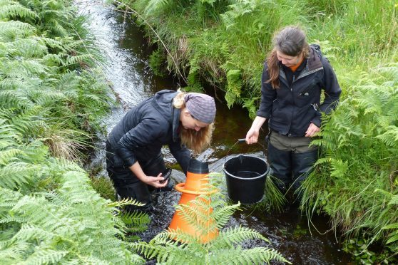 Dr Diane Baum and Lucy Ballantyne collecting Scottish pearl mussels in an Ardnamurchan burn. Picture: Jon Haylett