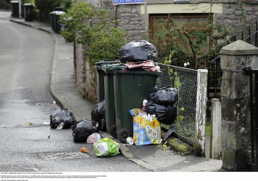 Bin collections could be shaken up