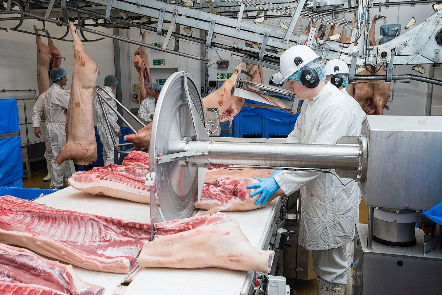 meat industry essay Essay about upton sinclair and the chicago meat-packing industry 1094 words   5 pages upton sinclair and the chicago meat-packing industry in 1900, there were over 16 million people living in chicago, the country's second largest city.