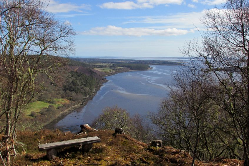 Looking over the Dornoch Firth from the Creag na Sroine viewpoint near Spinningdale. Photograph: Dave Savage, of Thurso