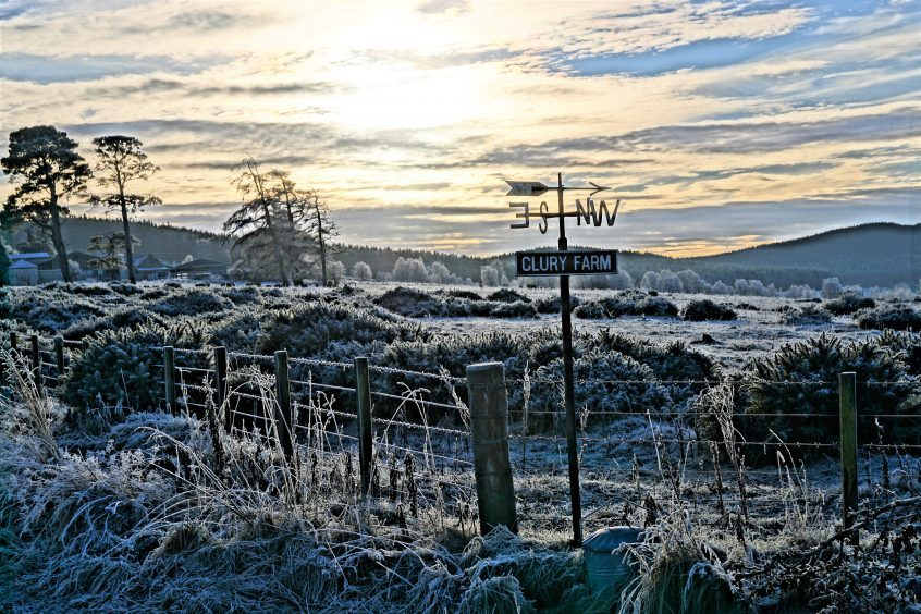 A hard frost at Clury Farm, near Dulnain Bridge in Strathspey. Picture courtesy of reader Michael McIntyre, Peterhead