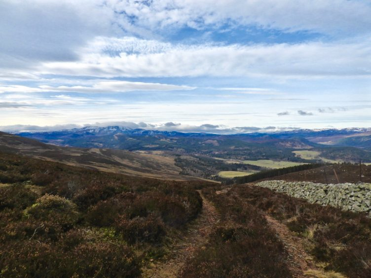 Stunning view from Pannanich Hill, near Ballater. Picture courtesy of reader Gillian Cassie