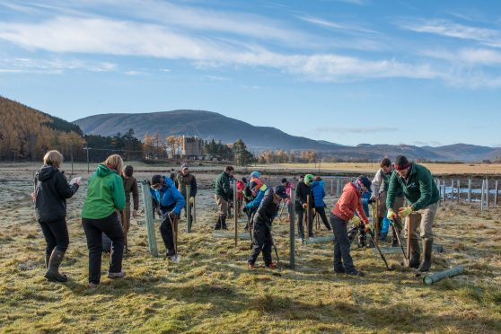 Pupils from Breamar Primary School helping plant trees on the banks of the River Dee