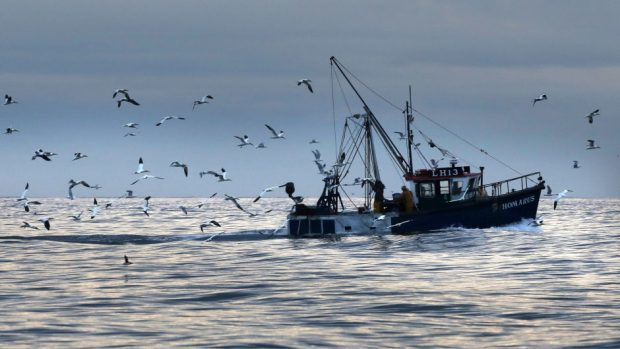A parliamentary report has warned that Britain's fishing industry will need continued access to European markets if it is to thrive after Brexit