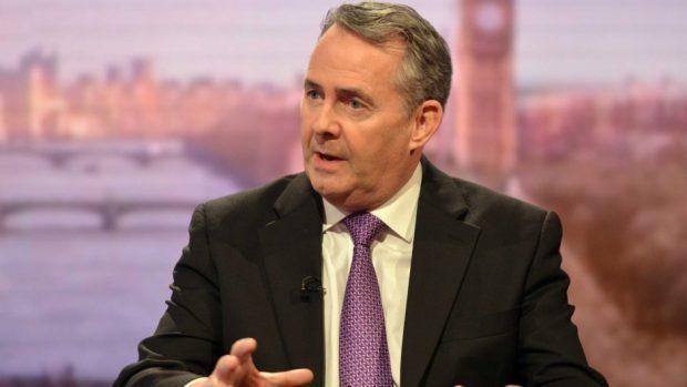 International Trade Secretary Liam Fox on The Andrew Marr Show (BBC/PA)