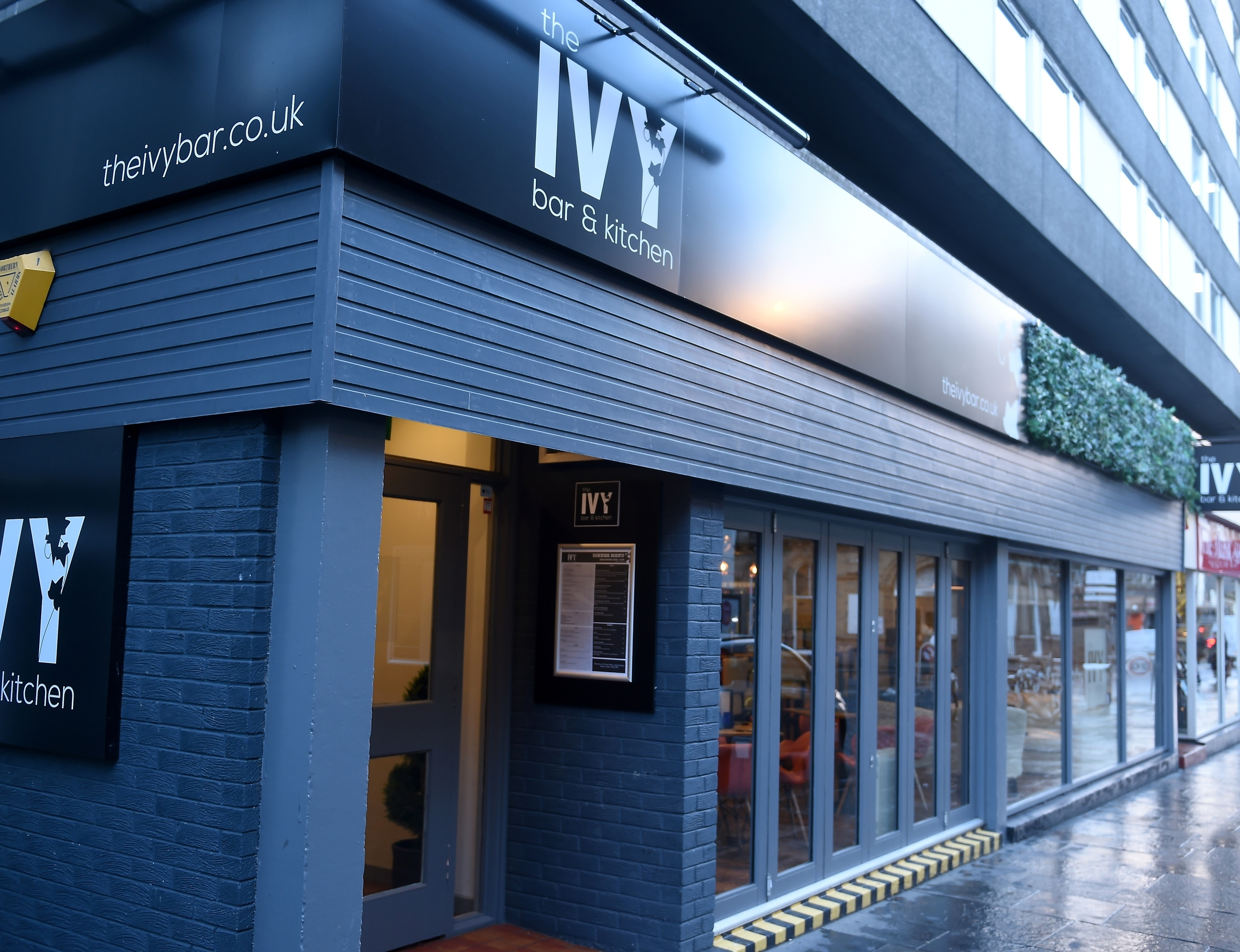 The Ivy Bar and Kitchen: A fine addition to the ever-growing ...