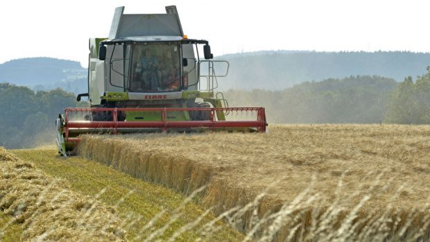 European Union farming subsidies could be replaced by a model to promote sustainable, nutritious British-grown food.