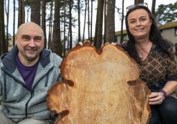 Waulkmill Grove residents Paul and Sandra Gill were eager to keep a cutting of a tree.