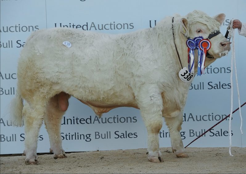 Gretnahouse Lord sold for 25,000gn