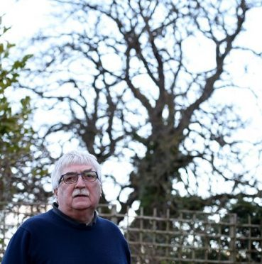 David Johnston with a view of the trees from his back garden