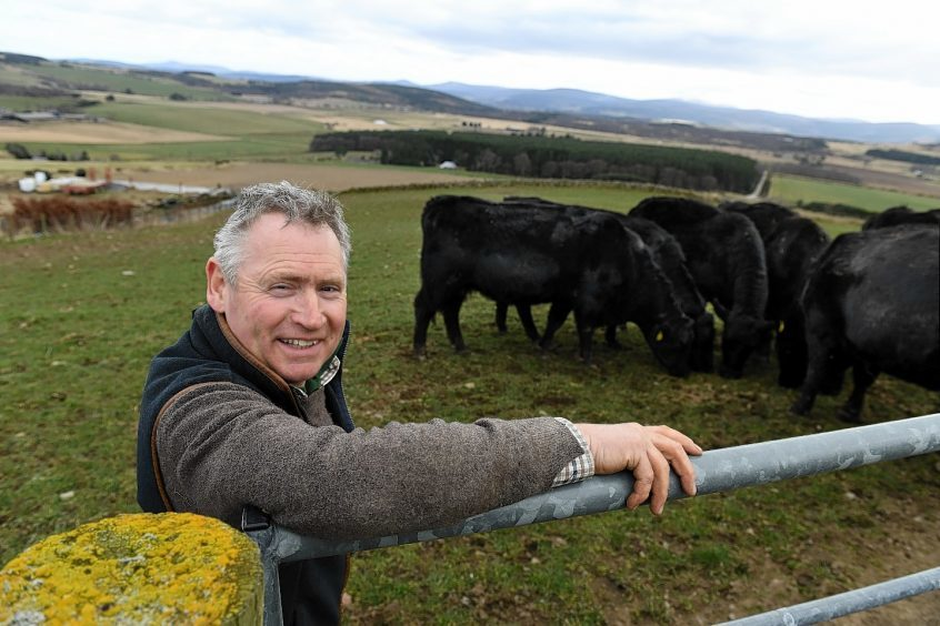 Ken Howie with some of his cattle.