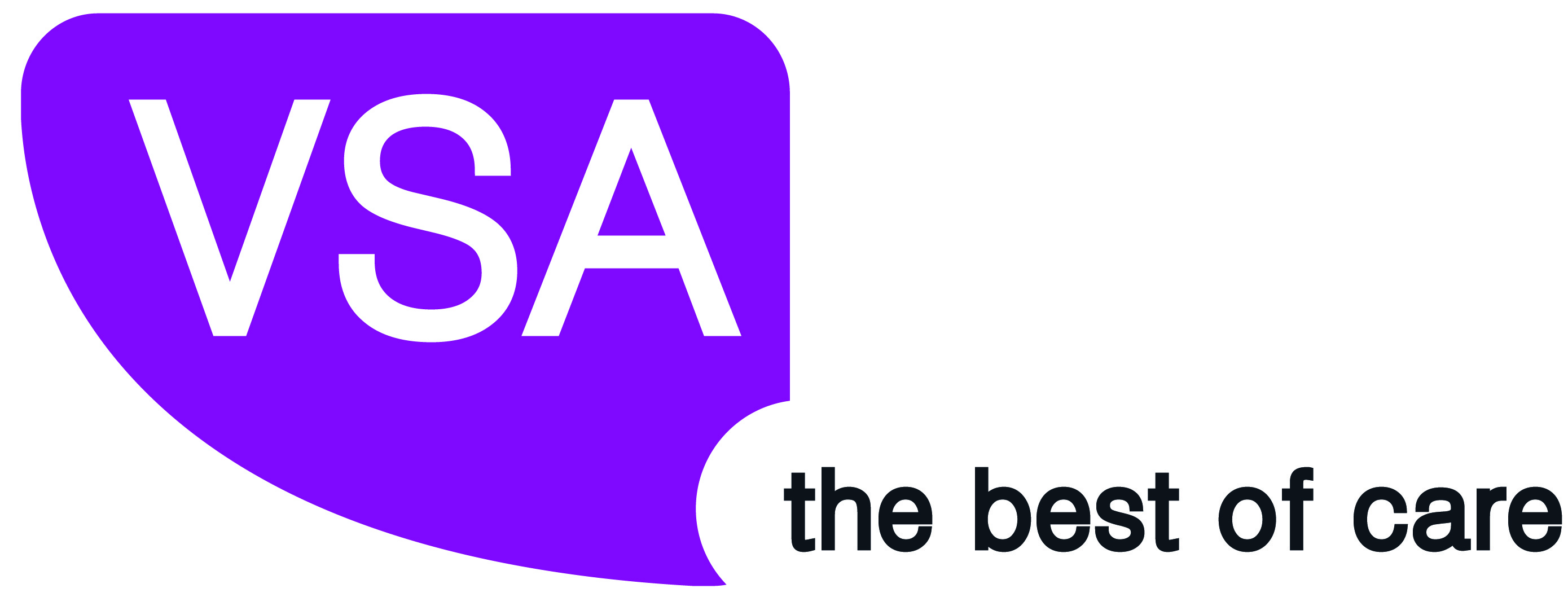 VSA_Logo_purple high res-01