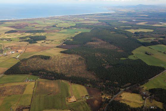 The portfolio includes Sleepieshill Forest