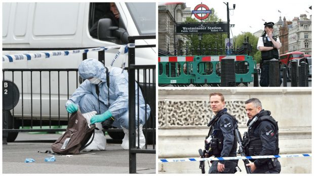 United Kingdom police arrest man carrying knives in London security incident