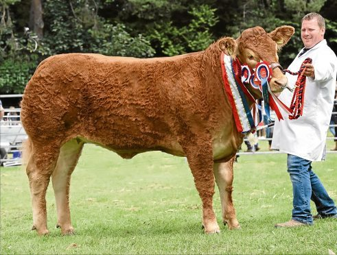 Garry Patterson with the show supreme champion of champions