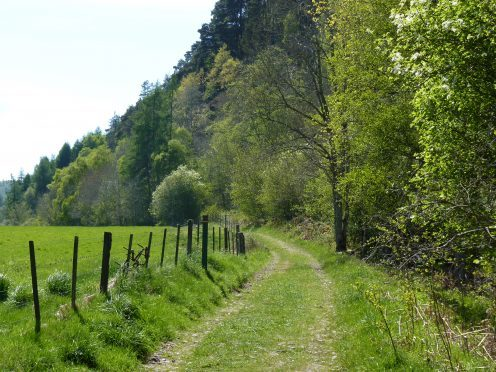 A stretch of the South Loch Ness Trail at the village of Foyers