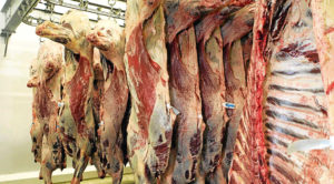 Both Scotbeef Inverurie and JW Galloway Group posted an increase in turnover and profits.