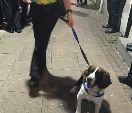 Buster joined police in the operation to find drugs in Elgin town centre.