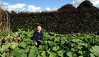 Peter Randlo in the empty pumpkin patch at Castle Fraser