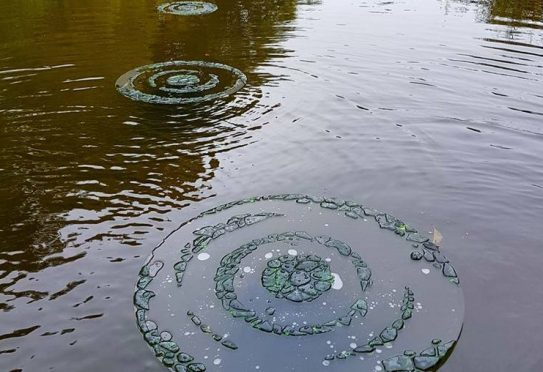 Shelagh Swanson's 'Ghost Ripples' has been created using Champagne bottles found on the estate.