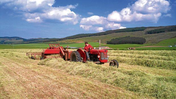 Massey Ferguson 65 tractor was unable to negotiate a Major