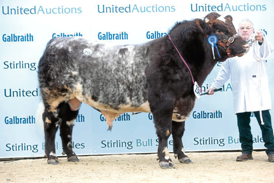Millerston Kasper sold for the top price of 20,000gn