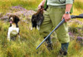 The SCF says most crofters do not hold the sporting rights on the land they farm.