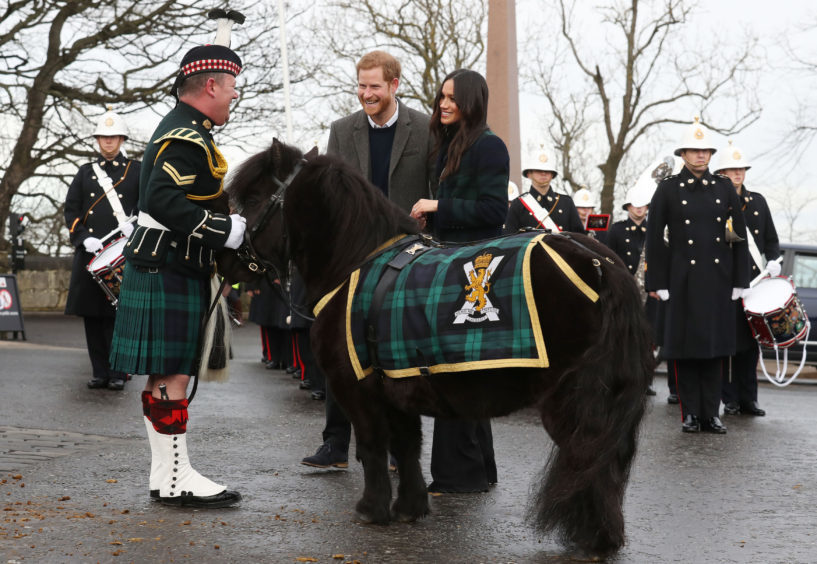 The royal couple meet Pony Major Mark Wilkinson and regimental mascot Cruachan IV
