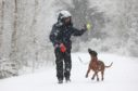 A woman walks her dog near Muir of Ord in blizzards in the Highlands.