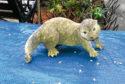 Otter callout for Scottish SPCA.