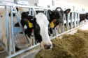 The milk price goes up in September