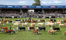 The show manager for the Royal Highland Show has left RHASS.