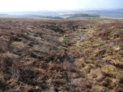 It will be the first UK-wide peatland preservation strategy.