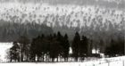 Watch as thick snowfall lands throughout Braemar.