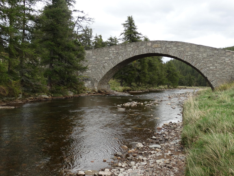 Special bridge dating site