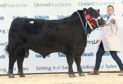 Aberdeen-Angus champion Tonley Ernie sold for 6,500gn