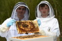 Martin Leahy and Sean Dinnie have been selected to represent Scotland at the International Meeting of Young Beekeepers 2018. Picture of (L-R) Martin Leahy and Sean Dinnie.  Picture by KENNY ELRICK     03/05/2018