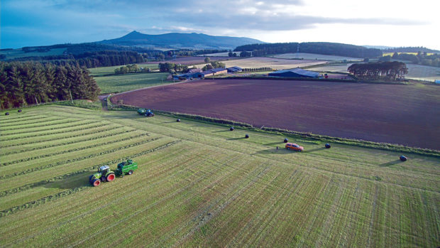 Gregor Ingram sent in this picture of silage making at Logie Durno Farm, near Inverurie. Contractor Will Youngson is chopping silage for a pit to feed sheep.