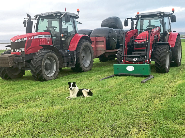 Tommy Linklater sent in this picture of Patch the dog at Stonelea Farm, Stenness, Orkney, taking a rest after silage making.
