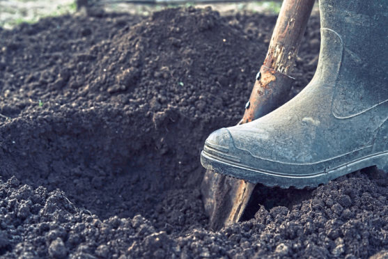 Farmers submitted soil samples to the James Hutton Institute   THINKSTOCK