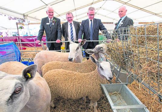 Scottish Secretary David Mundell, second left, and Environment Secretary Michael Gove, third left, at the Royal Highland Show yesterday