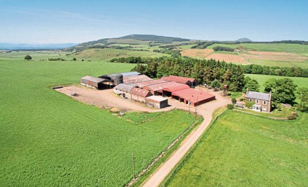 Auchmuir Farm