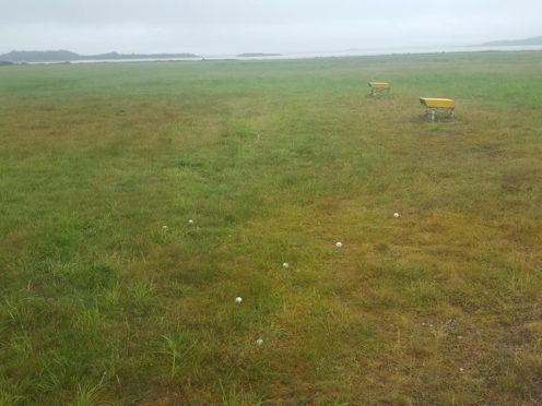 Golf balls at Oban Airport.