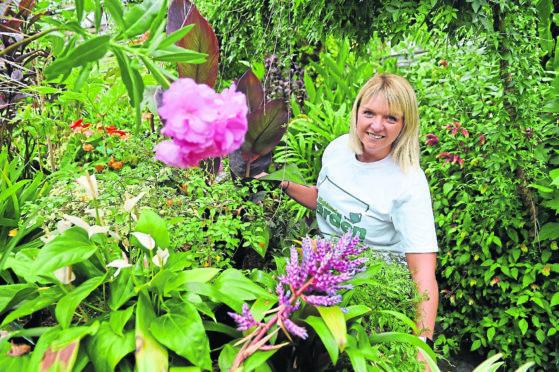 Cecilia Grigor, Planit Scotland director
