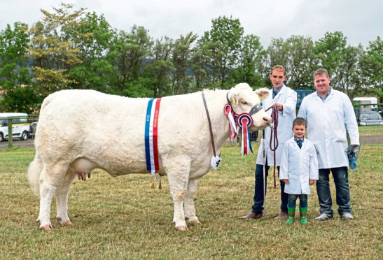 Sandy Hunter with the champion cow and Garry Patterson and his son Olly.