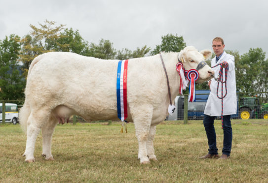Sandy Hunter with the supreme cattle champion from Garry Patterson and Blair Duffton.